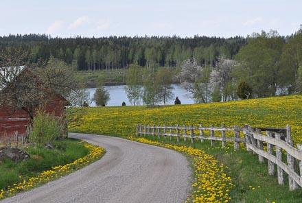 Kring Braås kan man hitta många små sjöar med vacker natur